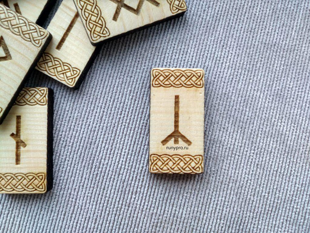 Что означает рунический символ Альгиз, толкование в гадании и применение в магии